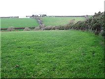 SW9372 : Across the Valley to Trevilgus Farm by Tony Atkin