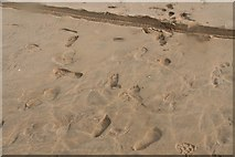 TQ9618 : A variety of footprints, and a wheel track, on Camber Sands by Chris