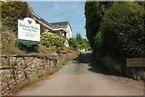 SX9364 : Ilsham Close, Wellswood by Derek Harper