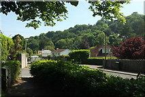 SX9364 : Ilsham Road, Torquay by Derek Harper