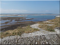NU1341 : Holy Island bay by norman griffin