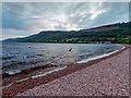 NH6037 : Shingle beach on Loch Ness by valenta
