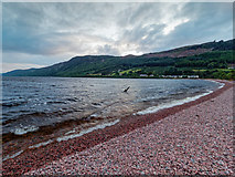 NH6037 : Shingle beach on Loch Ness by valenta