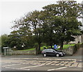 SM9107 : Trees at the edge of the churchyard, Steynton by Jaggery