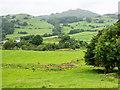 SD2290 : Field descending from minor road in Dunnerdale by Trevor Littlewood