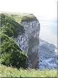 TA1974 : Nesting seabirds at Bempton Cliffs by Graham Robson