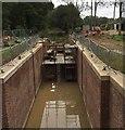 TQ0232 : Lock Restoration at Barberry Bridge : Week 37
