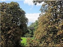 TQ1876 : The treetop walkway, Royal Botanic Gardens, Kew by Margaret Pennington