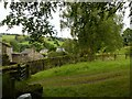 SE1467 : Wath Mill, Nidderdale, the mill leat by Alan Murray-Rust