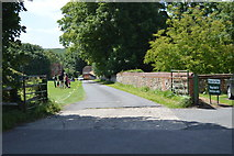 TL5136 : Road by the cricket ground by N Chadwick