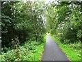 NT2839 : Tweed Valley Railway Path by John M