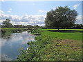 TL4355 : By the Cam at Grantchester by John Sutton