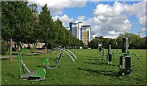 SK5803 : Outdoor gym equipment on Nelson Mandela Park by Mat Fascione