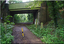 SU9946 : Bridge over dismantled railway by Ian Taylor
