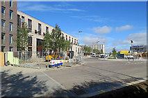 TL4259 : Up Eddington Avenue by John Sutton