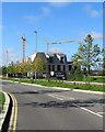 TL4260 : Eddington: cranes and Athena by John Sutton
