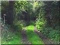 SK0237 : Brook Lane by Ian Calderwood