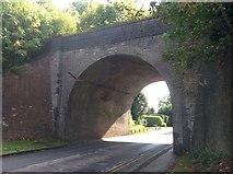 TL1215 : Nickey Line Bridge by Gary Fellows