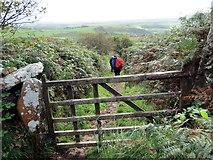 SH2734 : Llwybr Garnfadryn / Path to Garnfadryn by Alan Richards