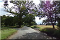 TL9062 : Almshouse Road, Blackthorpe by Geographer