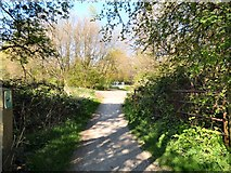 SJ7993 : Access to the Trans Pennine Trail by Gerald England