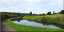 SO8690 : Canal south-east of Swindon in Staffordshire by Roger  Kidd