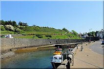 NX3343 : Port William Quay by Andrew Wood