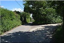 TL5135 : Rookery Lane by N Chadwick