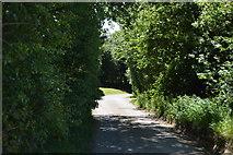TL5134 : Whiteditch Lane by N Chadwick