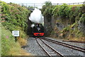 SN7376 : Number 8, Llewelyn, arrives at Devil's Bridge by Richard Hoare