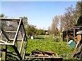 SJ7993 : Moseley Acre Farm by Gerald England