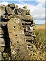 SE0479 : A single stone gatepost on Arkleside Moor : Week 37