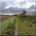 TL3544 : Towards Kneesworth by Dave Thompson
