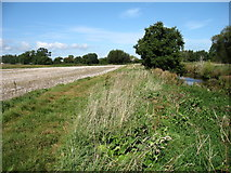 SO7706 : Beside the River Frome by David Purchase