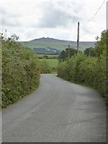 SX5597 : Road to East Down Cross by David Smith