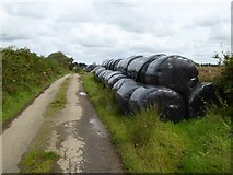 SX5598 : Bales beside the road to Westacombe by David Smith