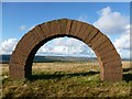 NX6998 : Striding Arch on Colt Hill : Week 38