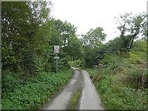 SS5500 : Bridge over Medland Brook north of Inwardleigh by David Smith