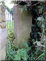 SJ2468 : Old stone in Northop Road, Northop : Week 39
