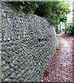 TV5999 : Flint Wall, Manor Gardens by PAUL FARMER