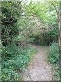 TL3849 : Barrington Footpath by Dave Thompson
