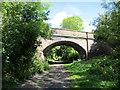 SJ3477 : The Wirral Way near Willaston by Jeff Buck