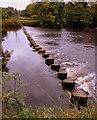SE1348 : Ilkley Stepping Stones by SawaSawa