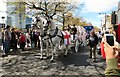 SJ8498 : St George's Day Parade 2017: Unicorns and a carriage by Gerald England