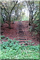 SP9752 : Steps up towards Boon's Barn by Philip Jeffrey