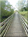 TQ9319 : Boardwalk at Rye Harbour Nature Reserve by PAUL FARMER