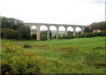 SY3192 : Cannington Viaduct by Nigel Mykura
