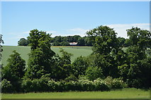 TL5237 : Wind Sock, Airfield on the edge of Saffron Walden by N Chadwick