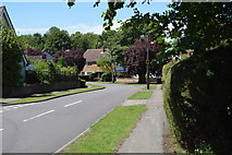 TL5337 : Beeches Close by N Chadwick