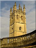 SP5206 : Magdalen College tower from the Botanical Garden by Steve Daniels
